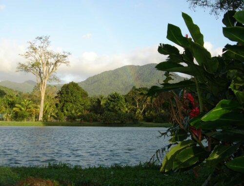 Location du Parc
