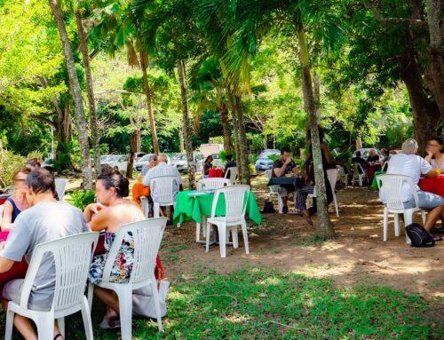 Table d'hôtes du parc